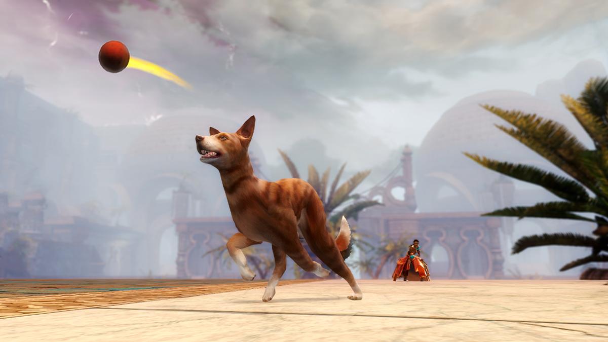 GW2 Gemstore Update–Pet Dog Whistle Basenji - atlgn com