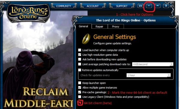 Lotro's Update 24 Arrives With 64-bit Client,    - atlgn com